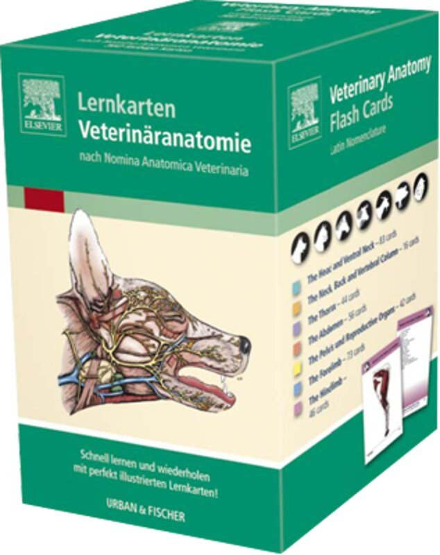 Fein Netzfänger Anatomie Lernkarten Bilder - Anatomie Von ...